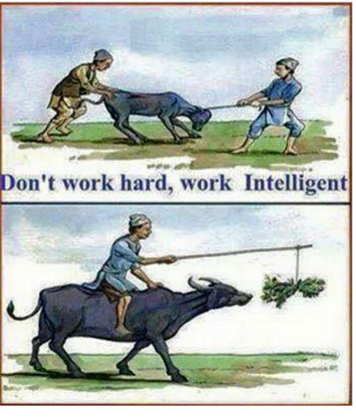 هوشمندانه کار کنید